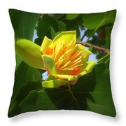 Tulip Poplar Flower Throw Pillow