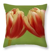 Tulip Tulipa Sp Pair, Hoogeloon Throw Pillow