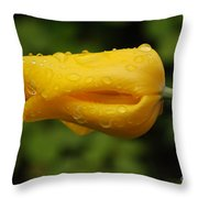 Tulip With Raindrops 2 Throw Pillow