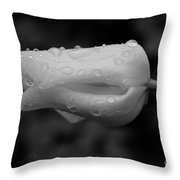 Tulip With Raindrops Throw Pillow