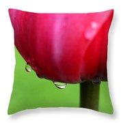 Tulipa Throw Pillow