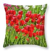 Tulips Galore Throw Pillow