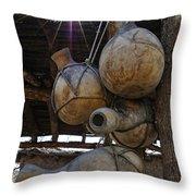 Tumacacori Gourds Throw Pillow
