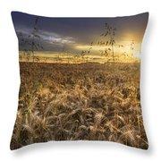 Tumble Wheat Throw Pillow
