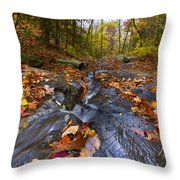 Tumbling Leaves Throw Pillow