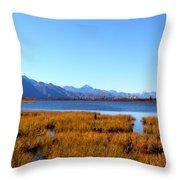 Tundra Lake Throw Pillow
