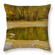 Tunnel Pond Throw Pillow by Idaho Scenic Images Linda Lantzy