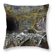 Tunnel With Abandoned Railtracks Throw Pillow