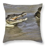 Turf Wars Throw Pillow
