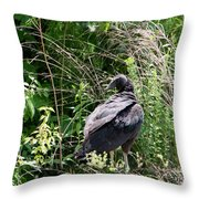Turkey Vulture - Buzzard Throw Pillow by EricaMaxine  Price