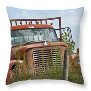 Turned Out To Pasture Throw Pillow