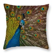 Turquoise And Gold Wonder Throw Pillow