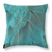 Turquoise Blue Feathers Throw Pillow