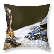 Turtle Conversation Throw Pillow by Elena Elisseeva