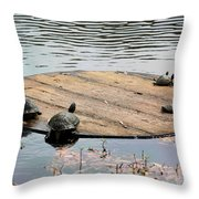 Turtle Family Beach Throw Pillow by Suzanne Gaff
