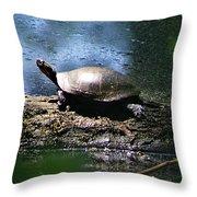 Turtle I Throw Pillow