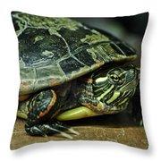 Turtle Neck Throw Pillow