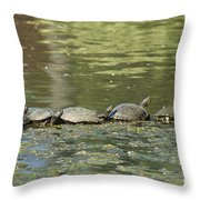 Turtle Traffic Jam Throw Pillow