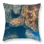 Turtle Underwater,high Angle View Throw Pillow