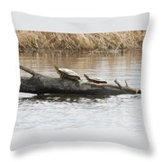 Turtles Pretending To Be Part Of The Log Throw Pillow