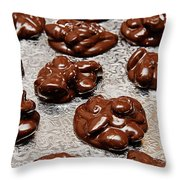 Turtles The Endangered Species Throw Pillow