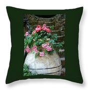 Tuscan Earthenware Pot And Flowers Throw Pillow