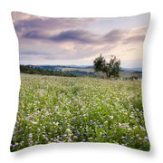 Tuscany Flowers Throw Pillow