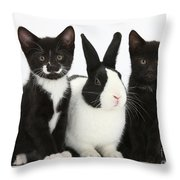 Tuxedo Kittens With Dutch Rabbit Throw Pillow
