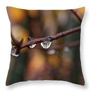 Twig Throw Pillow