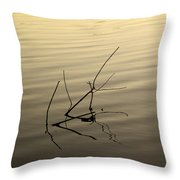 Twigs Breaking The Calm Surface Of The Lake On Sunset Throw Pillow