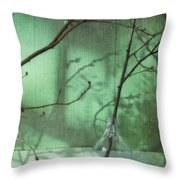 Twigs Shadows And An Empty Beer Jug Throw Pillow
