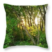 Twilight In The Woods Throw Pillow