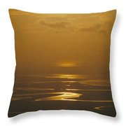 Twilight Over A Wetland With Meandering Throw Pillow