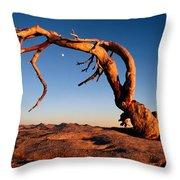 Twilight View Of A Jeffrey Pine Tree Throw Pillow