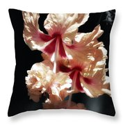 Twin Beauty Hibiscus Throw Pillow