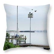 Twin Birdhouses Throw Pillow