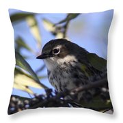 Twinkle Throw Pillow