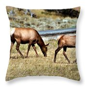 Twins And Mother Throw Pillow