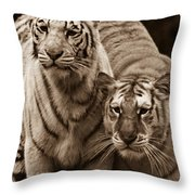 Twins Of India Throw Pillow