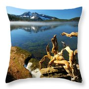 Twisted On The Shore Throw Pillow