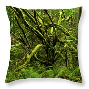 Twisted Rain Forest Throw Pillow