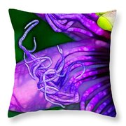 Twisted Shadows Throw Pillow by Judi Bagwell