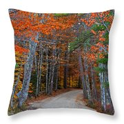 Twisting Road Of Fall Throw Pillow