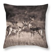 Two Antelopes Together In A Field Throw Pillow
