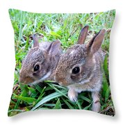 Two Baby Bunnies Throw Pillow