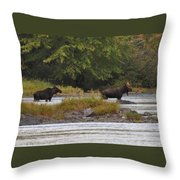 Two Bull Moose In Maine Throw Pillow