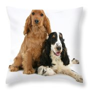 Two Cocker Spaniels Throw Pillow