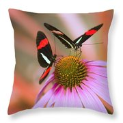 Two Colorful Butterflies On Cone Flower Throw Pillow