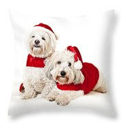 Two Cute Dogs In Santa Outfits Throw Pillow