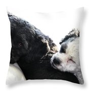 Two Cute Throw Pillow by Larry Ricker